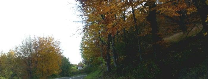 Nova Kasaba is one of Tempat yang Disukai Erkan.