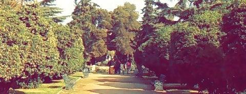 Parque Quinta Normal is one of Posti che sono piaciuti a Janeth.