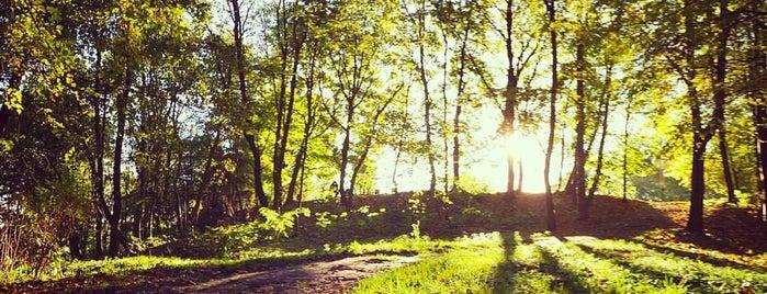 "Парк ""Высокий Замок"" is one of Lviv."
