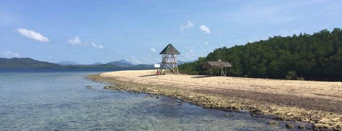 Starfish Island is one of Filipinler-Manila ve Palawan Gezilecek Yerler.