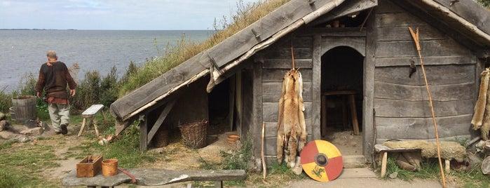 Foteviken Viking Museum is one of Baltic's.