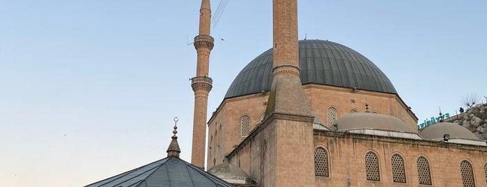 Mevlid-i Halil Camii is one of Urfa-Antep.