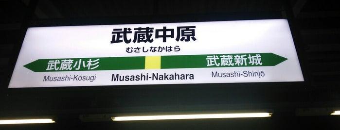Musashi-Nakahara Station is one of JR 미나미간토지방역 (JR 南関東地方の駅).
