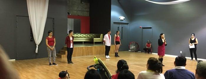 Salsa N Seattle Dance Studio is one of Seattle favs.