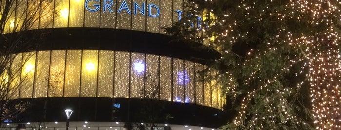 Grand Tree Musashikosugi is one of セブンティーンアイスがある場所.