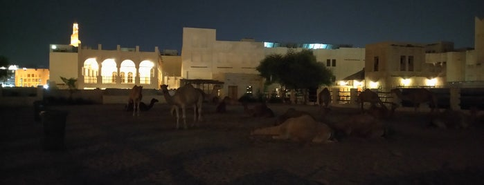 Camel Pen is one of Doha, Qatar.