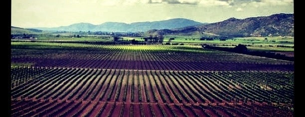Vinicola Monte Xanic is one of Ensenada: places you MUST go!.