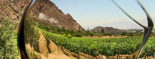 Ruta Del Vino is one of Ensenada: places you MUST go!.