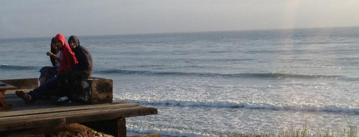 Terra Noble is one of Ensenada: places you MUST go!.