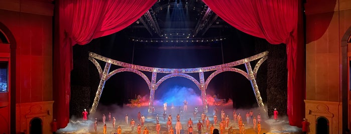 """""""O"""" By Cirque Du Soleil is one of NYC➡️CALI➡️MEXICO."""