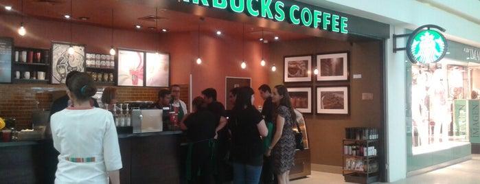 Starbucks is one of Milyerk Pamela : понравившиеся места.