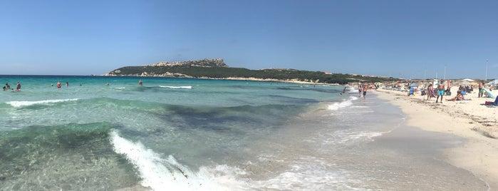 Capo Testa Spiaggia di Ponente is one of Sardinia.