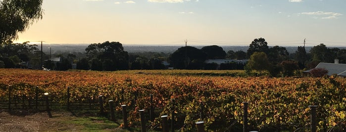 Penfolds Magill Estate Cellar Door & Restaurant is one of Good Food Adelaide: Eat and Drink.
