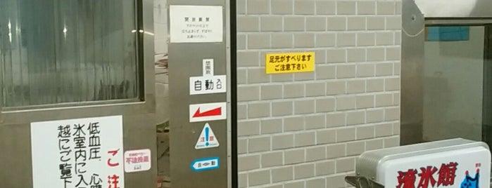 宗谷岬流氷館 is one of [todo] 稚内&利尻島.