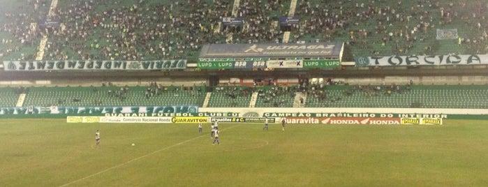 Estádio Brinco de Ouro da Princesa is one of Aqui na terra tão jogando futebol.