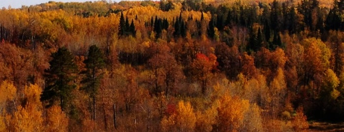 Chippewa National Forest is one of National Recreation Areas.