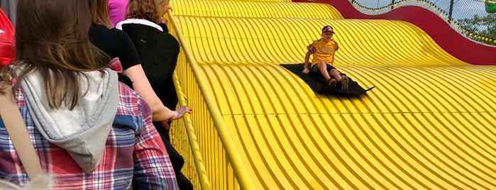 Giant Slide Minnesota State Fair is one of Posti salvati di Mike.