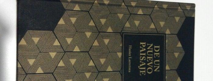Enclave de libros is one of Posti che sono piaciuti a Santiago.