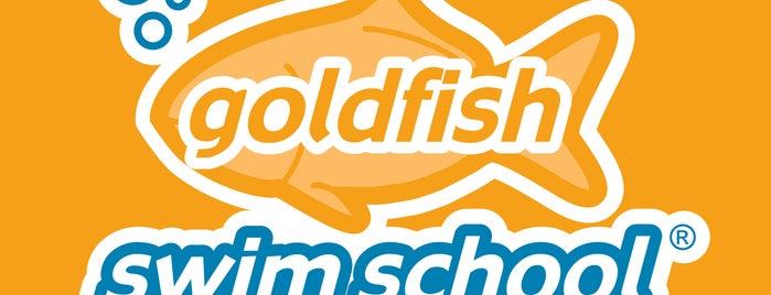 Goldfish Swim School - Silver Spring is one of Lugares favoritos de John.