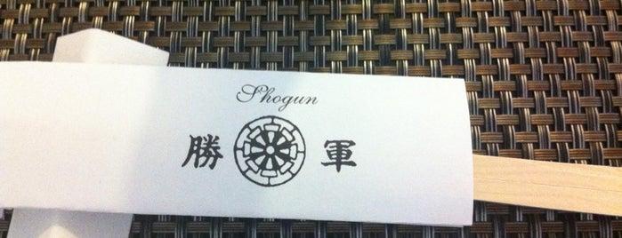 Shogun is one of 2017.