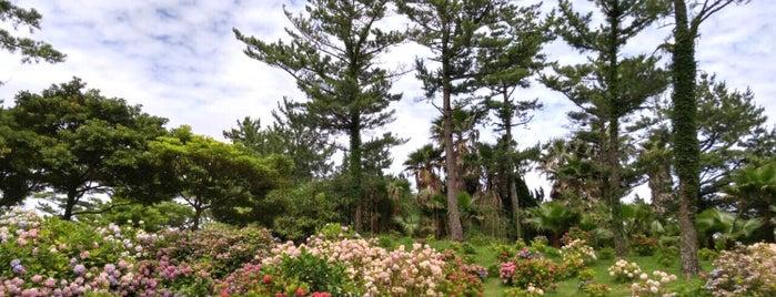 Hallim Park is one of R : понравившиеся места.