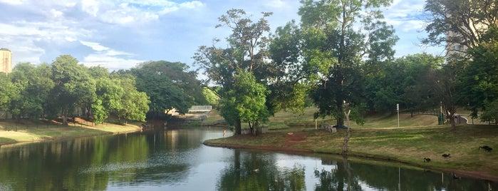 Parque das Artes is one of iHARA'nın Beğendiği Mekanlar.