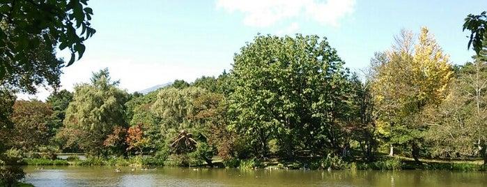 塩沢湖 is one of Lugares favoritos de papecco2017.
