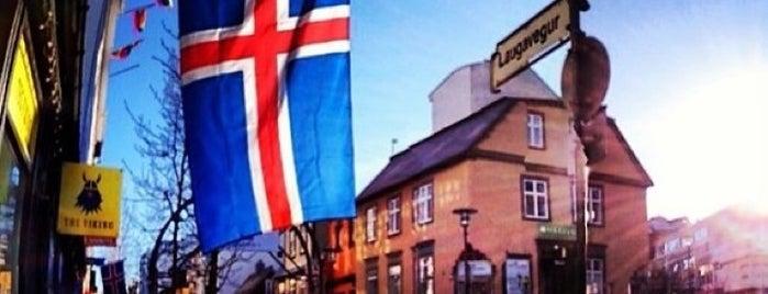 Reykjavík City Guide