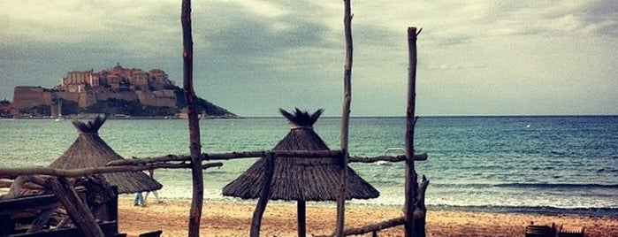 Plage de Calvi is one of maryさんのお気に入りスポット.