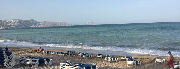 Playa Cap Blanc / L'Albir is one of Daさんのお気に入りスポット.