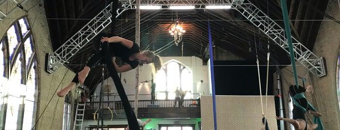 Aloft Circus Arts is one of Andy : понравившиеся места.
