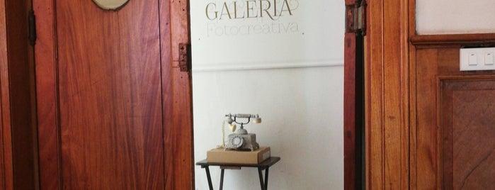 Galeria Fotocreativa is one of Museos.