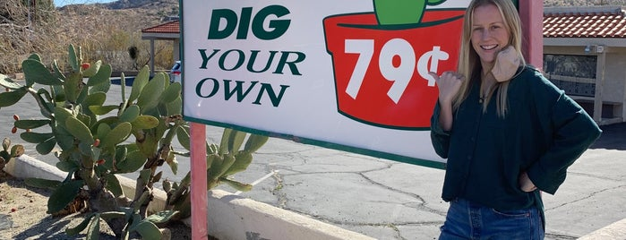 Cactus Mart is one of Palm Springs.