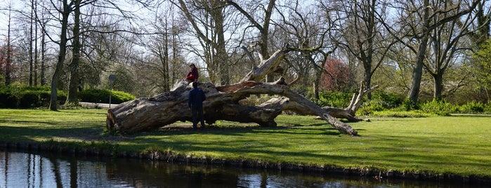 Wilhelminapark is one of Nizozemí.
