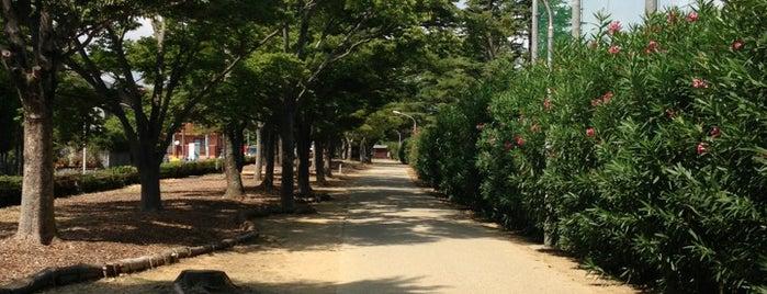 和地山公園 is one of 登下校の道.
