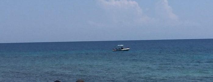 Paradiso Beach & Resort is one of Locais curtidos por Andolini.