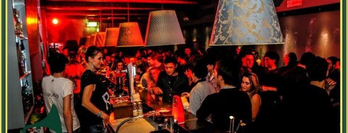 iGinGini disco lounge is one of Riviera Adriatica.