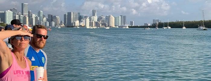 Miami Marine Stadium is one of สถานที่ที่ Senator ถูกใจ.