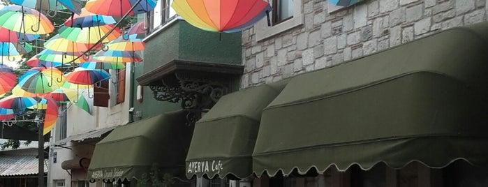Ayerya Organik Urunler&Cafe is one of Future Plan.