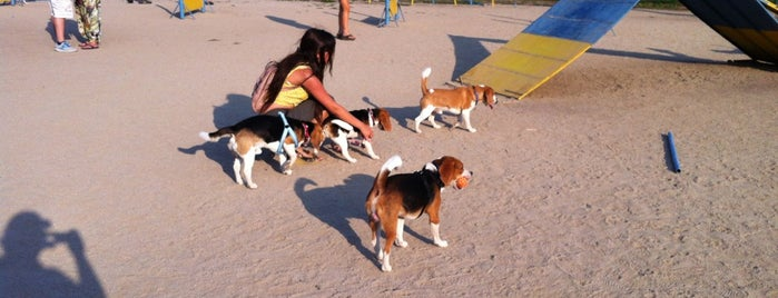 Parque Canino is one of สถานที่ที่บันทึกไว้ของ Nacho.