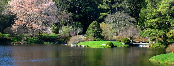 The Asticou Azalea Garden is one of Mo's Liked Places.