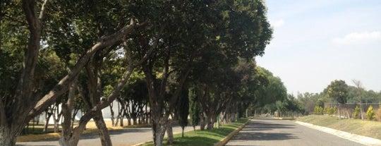 Deportivo Sierra Hermosa is one of Brian 님이 좋아한 장소.