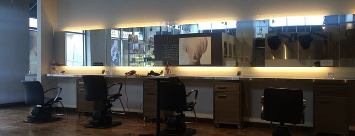 Michael Anthony Salon & Spa is one of Chicago.