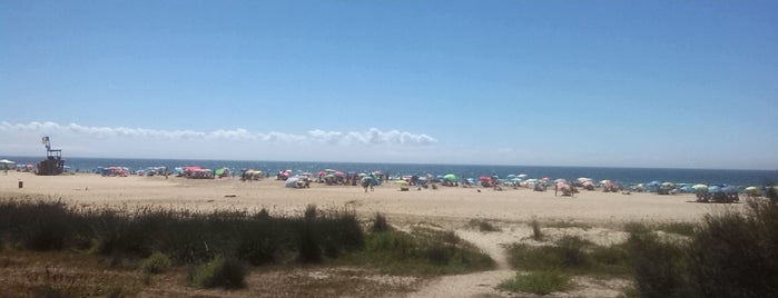 Playa de Bolonia is one of Roさんのお気に入りスポット.