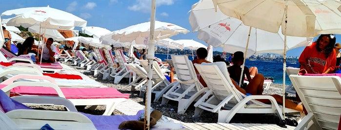Flamingo Beach is one of 🇹🇷 Antalya.