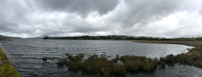 Trawsfynydd is one of Attractions & Activities close by.