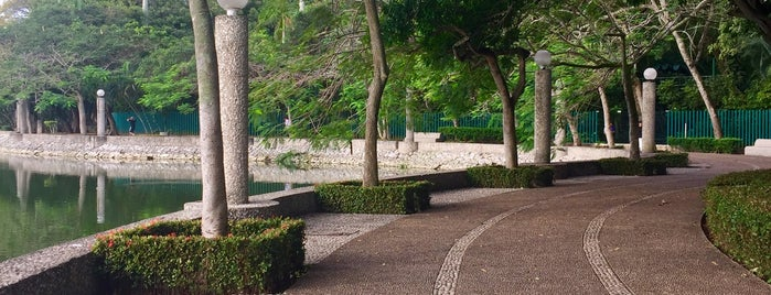 Parque-Museo La Venta is one of Daniel : понравившиеся места.
