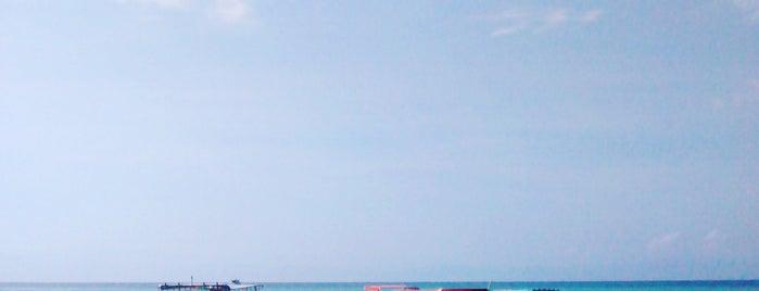 Punta de Mita is one of สถานที่ที่ Araceli ถูกใจ.