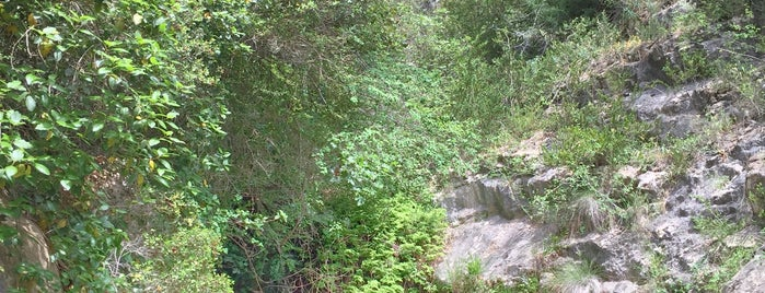 Forat Del Buli is one of สถานที่ที่ Watashi ถูกใจ.