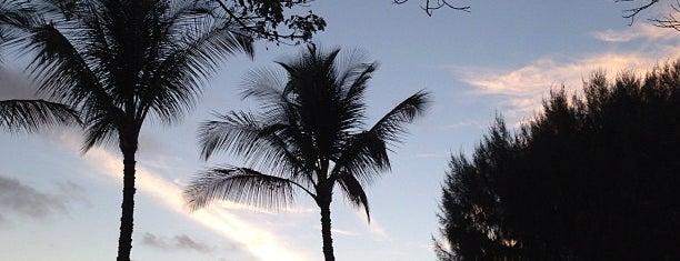 Waimea Plantation Cottages is one of Hawaii.